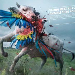 La deforestazione la combatti non mangiando carne