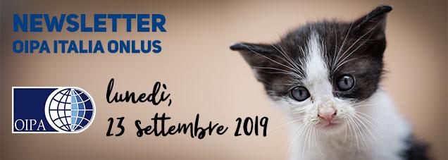 Newsletter OIPA del 23 settembre 2019