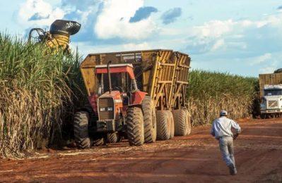 Brasile: No alle Piantagioni di Biocarburanti in Amazzonia!