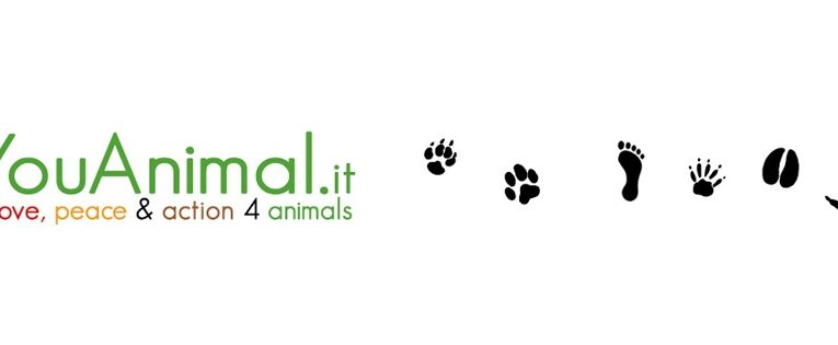 YouAnimal.it – Newsletter degli animali n. 30/2020