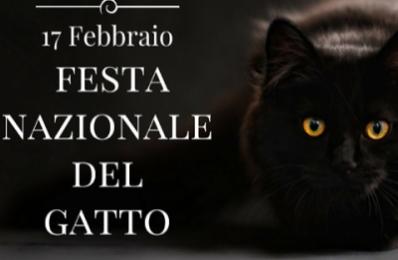 Perché la Festa del Gatto è il 17 febbraio