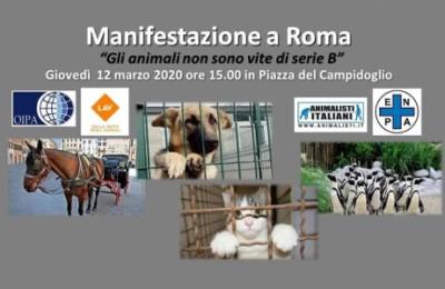 """Animalisti in Piazza del Campidoglio il 12 marzo: """"Animali non sono cittadini di serie B"""""""