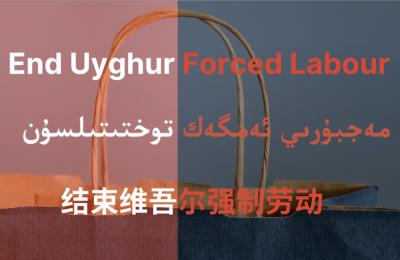 Mettiamo fine al genocidio uiguro, petizione on line