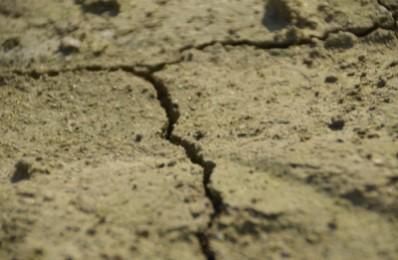 Webinar del Forum Salviamo il Paesaggio dedicato al Suolo