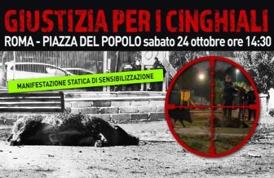 """""""Giustizia per i cinghiali uccisi"""", sabato 24 ottobre in piazza per protestare"""