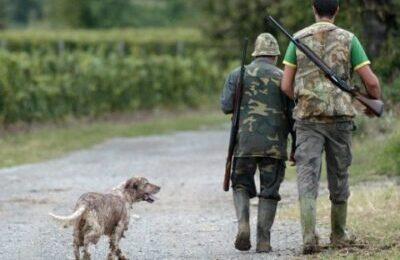 Caccia, Cassazione: E' reato sparare vicino luoghi abitati