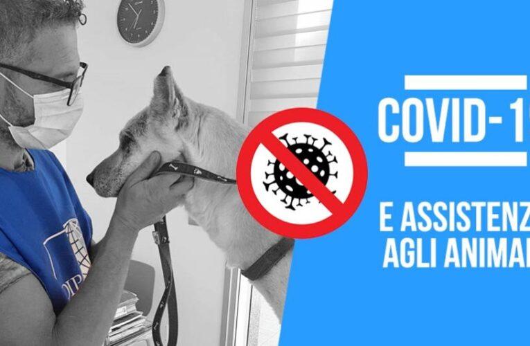 DPCM Covid, vademecum su come accudire gli animali