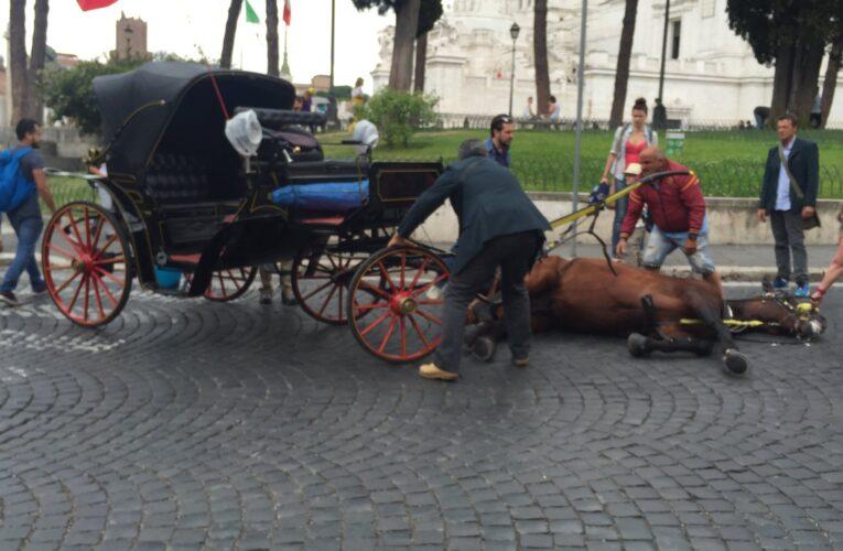 Botticelle romane nei parchi, ma non viene cancellata la schiavitù
