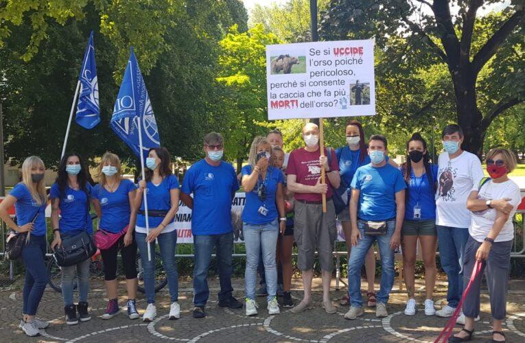 Gestione orsi del Trentino, P.A. di Trento annuncia abbattimenti